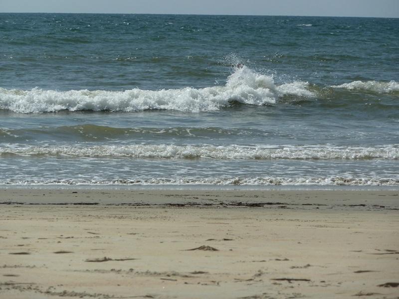 ...kleines Raetsel: Wer steckt in der Welle? :)