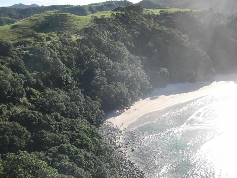 """New Chums Beach"" July beim Muschelsuchen"
