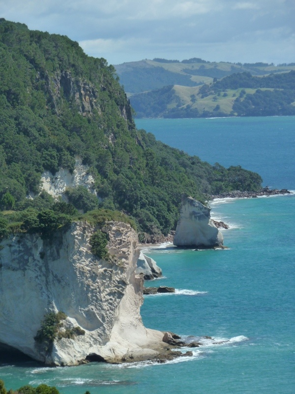 """Blick auf """"Cathedral Cove Marine Reserve"""""""