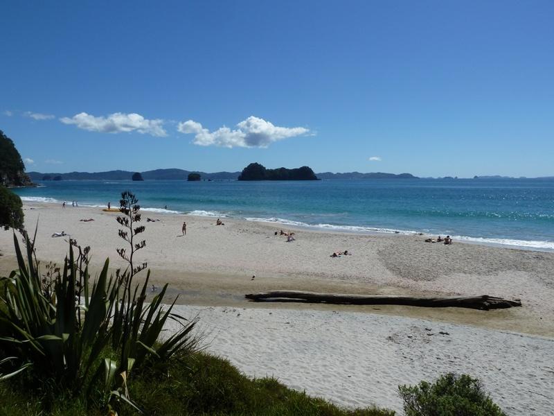 """Strand von """"Hahei"""", etwas mehr Leute, dafuer kann man hier tauchen"""