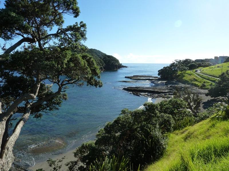 """Goat Island Marine Reserve"""